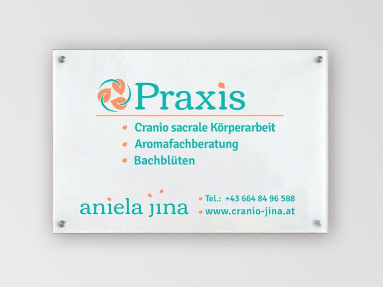 Aniela Flyer Portfolio
